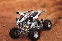 Teamsix Quad 125cc Fox