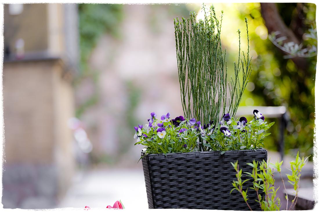 Teamsix vaso fiori rettangolare rattan teamsix mobili for Vaso rettangolare